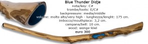 blue thunder didje